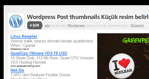 wordpress post thumbnail